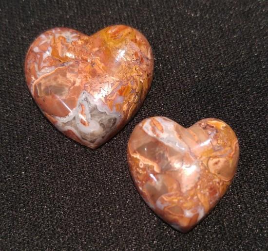 butterfly_jasper_hearts-small.jpg